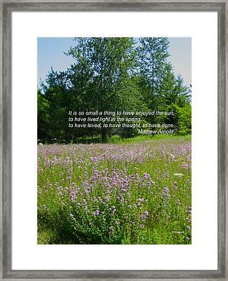 To Live Light In The Spring Framed Print by Deborah Dendler