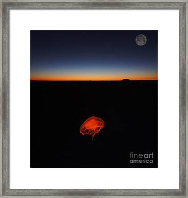 To Moon And Back  Framed Print by Celestial Images