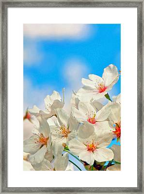 To Nature's Teachings Framed Print by Mitch Cat