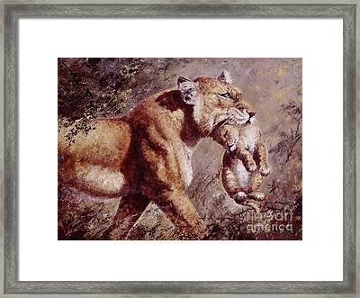 To Safety Framed Print by Silvia  Duran