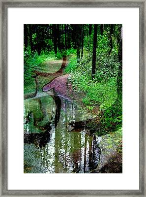 To Take Or Not Framed Print by Shirley Sirois