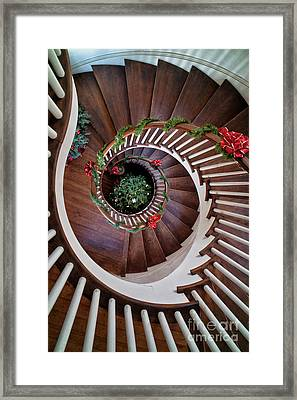To The Bottom Of The Staircase Framed Print by Nicki McManus
