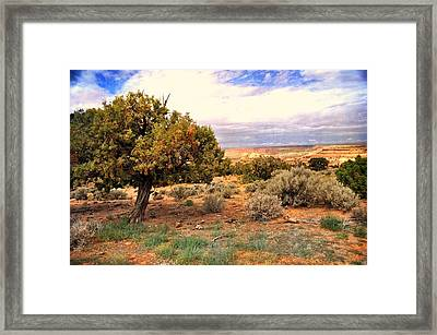 To The Horizon Framed Print by Marty Koch