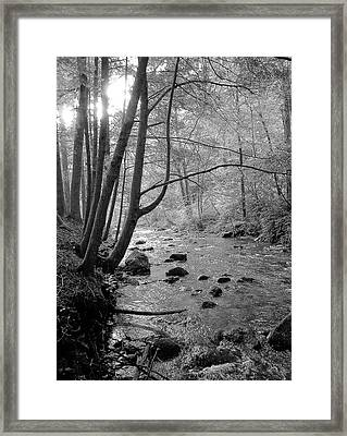 To The Mornings Framed Print