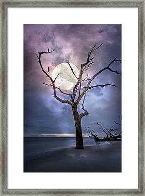 To The Moon Framed Print by Debra and Dave Vanderlaan