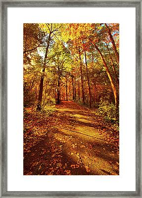 To The Place Where I Belong Framed Print by Phil Koch