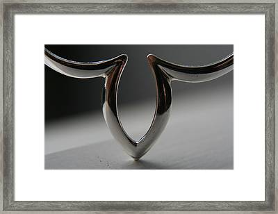 To The Point Framed Print by Rachelle Johnston