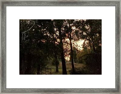 To The Unknown Framed Print