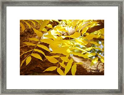 To Touch You Framed Print