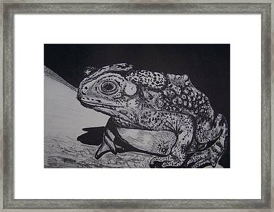 Framed Print featuring the mixed media Toad by Jude Labuszewski