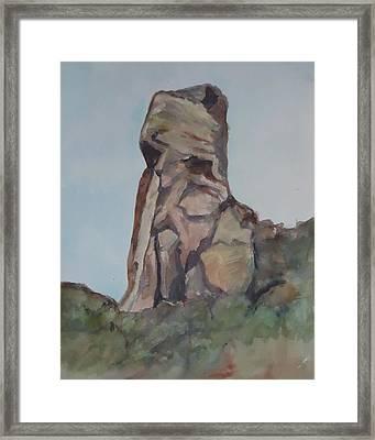 Toad Rock Framed Print