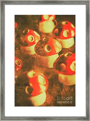 Toadstools From Old Worlds Framed Print