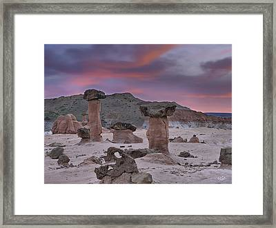 Toadstools Framed Print by Leland D Howard