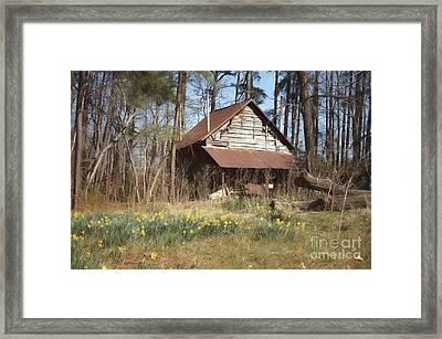 Tobacco Barn In Spring Framed Print by Benanne Stiens