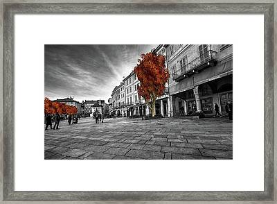 Tobacco Shop Or Tobacconist In Italy Framed Print