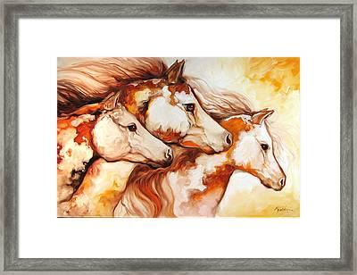 Tobiano Horse Trio Framed Print by Marcia Baldwin