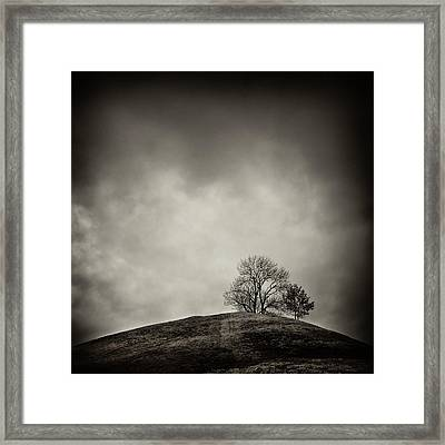 Tobias Hill Framed Print by Jaromir Hron