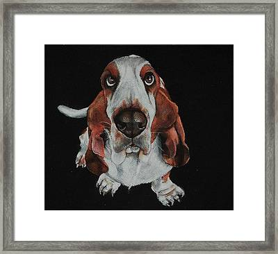 Toby Was All Ears Framed Print