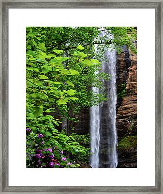 Toccoa Falls In Georgia Framed Print by Eva Thomas