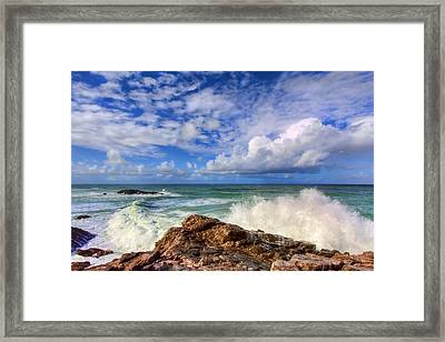 Toco Blues Framed Print