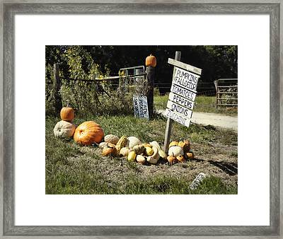 Framed Print featuring the photograph Today's Harvest by Cricket Hackmann