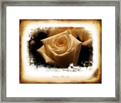 Today's Miracle Framed Print by Shevon Johnson