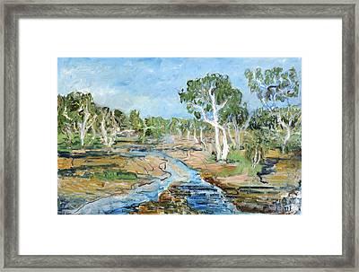 Todd River Framed Print by Joan De Bot