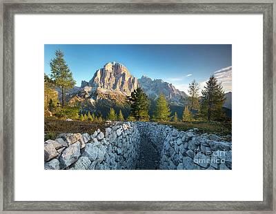 Tofana De Rozes - Dawn Framed Print by Brian Jannsen