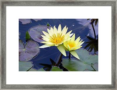 Together Again Framed Print