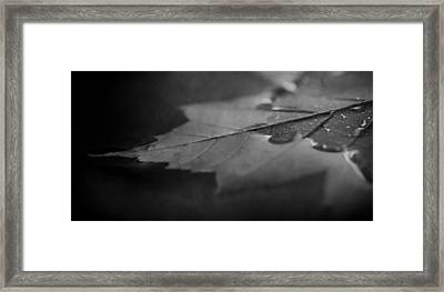 Together At Last In Black And White Framed Print