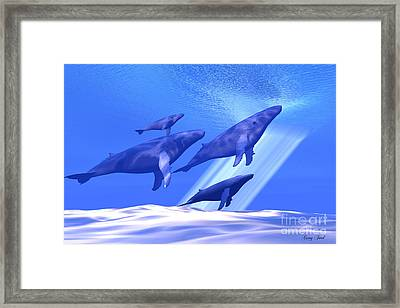 Together Framed Print by Corey Ford