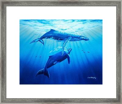 Together Framed Print by Daniel Bergren