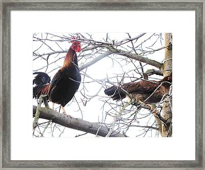 Together Framed Print by HollyWood Creation By linda zanini