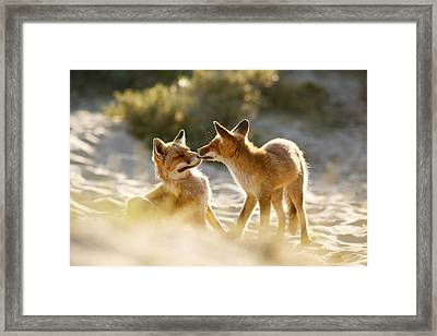 Togetherness - Mother And Kit Moment Framed Print