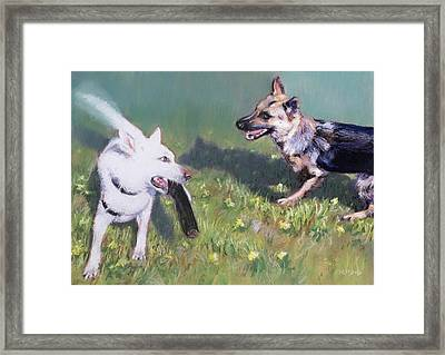 Togo And Friend Framed Print