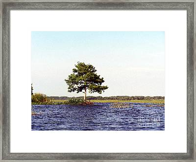 Toho Paints Framed Print by Jack Norton