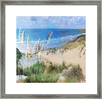 Toi Tois In Coastal  Sandhills Framed Print