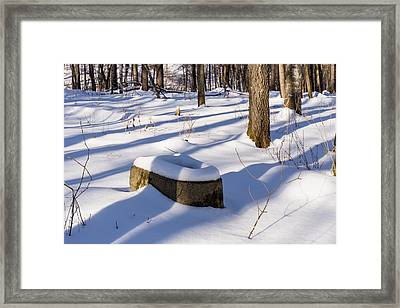 Toilet Remains Winter 1 Framed Print by John Brueske