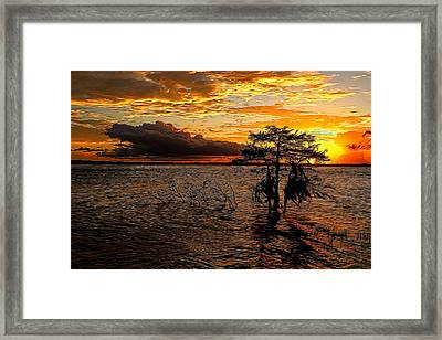 Toledo Bend Sunset Painted Framed Print by Judy Vincent