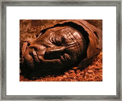 Tollund Bog Man Framed Print by Alexandra Jordankova