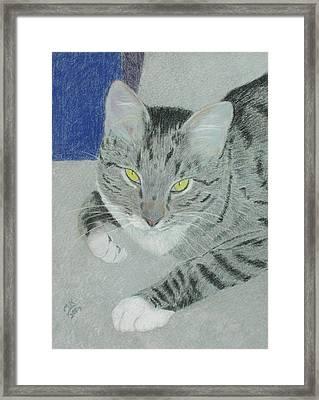 Tom Bombadil Framed Print