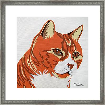 Tom Cat Framed Print by Slade Roberts