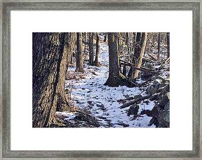 Tom Paul Trail Winter Framed Print