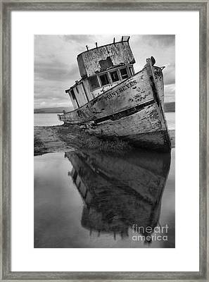 Tomales Bay Shipwreck Black And White Portrait Framed Print by Adam Jewell