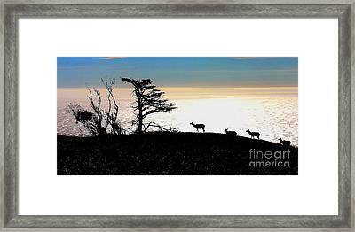 Tomales Bay Tule Elks Framed Print by Wingsdomain Art and Photography