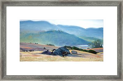 Tomales Twilight Framed Print by Colleen Proppe