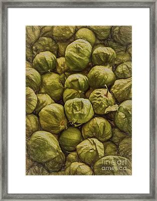 Tomatillos Framed Print by Janice Rae Pariza