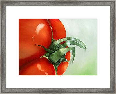 Tomato - Original Sold Framed Print by Cathy Savels