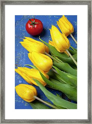 Tomato And Tulips Framed Print by Garry Gay