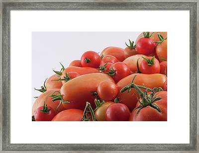 Framed Print featuring the photograph Tomato Hill by James BO Insogna